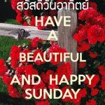 รูปสวัสดีตอนเช้าวันอาทิตย์ พร้อมข้อความสวัสดีตอนเช้าภาษาอังกฤษ have a beautiful and happy sunday