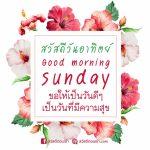 รูปสวัสดีทักทายตอนเช้าวันอาทิตย์สดใสยามเช้า รูปดอกไม้สีแดงสวยๆสดชื่น พร้อมข้อความอวยพร Good morning sunday ขอให้เป็นวันดีๆ เป็นวันที่มีความสุข