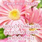 รูปอรุณสวัสดิ์ยามเช้าวันอังคาร พร้อมรูปดอกไม้น่ารักๆ และคำอวยพรประจำวัน ขออวยพรให้ โชคดีและมีชัย เดินทางไปไหน ปลอดภัย จะหยิบจับ ทำอะไร ก็ขอให้ร่ำรวย รุ่งเรือง