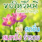 รูปสวัสดีตอนเช้าวันพุธสดใส พร้อมรูปดอกไม้ และคำอวยพรประจำวัน ขอให้วันนี้  มีแต่ความสุข สุข สดชื่น สมหวัง ร่ำรวย