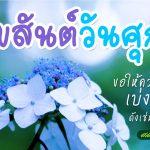 รูปสวัสดีตอนเช้าวันศุกร์ พร้อมรูปดอกไม้สวยๆ สุขสันต์วันศุกร์ ขอให้ความสุข เบ่งบาน ดังเช่นดอกไม้