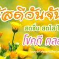 รูปสวัสดีตอนเช้า ดอกไม้สีเหลือง พร้อมคำอวยพรให้โชคดีตลอดวัน