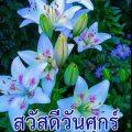 ภาพสวัสดีวันศุกร์พร้อมดอกไม้สีฟ้า และคำอวยพร